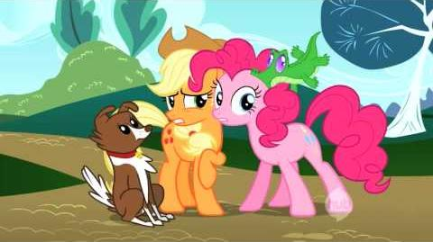 My Little Pony Friendship is Magic - May the Best Pet Win!