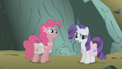 Rarity and Pinkie S01E07