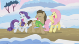 Ponies singing Winter Wrap Up