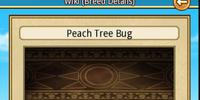 Peach Tree Bug