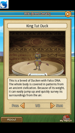 King Tut Duck