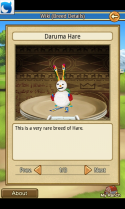Daruma Hare