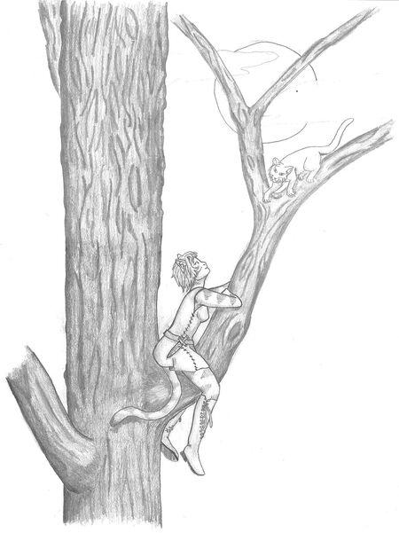 Aori beim Klettern in einem Baum