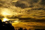 Yellow-Sky-White-Grey-Horizon-Sunset-Gold-Clouds-426259