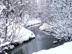 Winter stream by mizuyasha-d32gm4w
