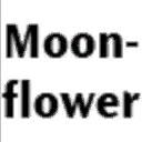 Mysimsmoonflower