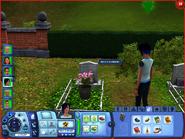 Skullfinder's Grave