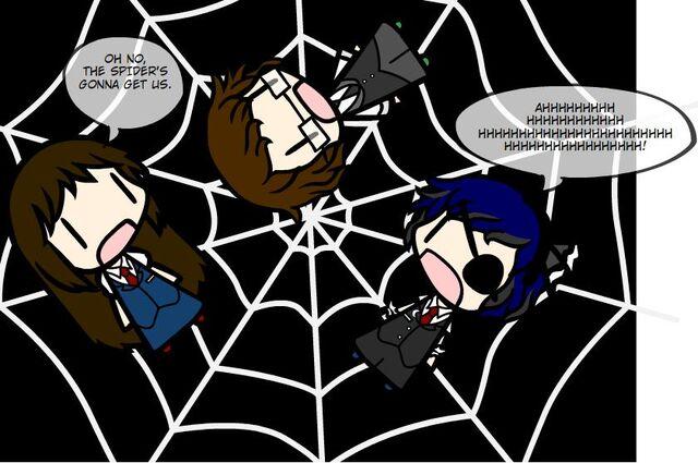 File:Spider 1.jpg