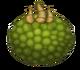 Oaktopus-egg
