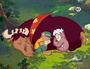 Chloe Owl, Victor Vole and Winston sleeping