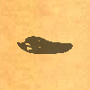 Sil-crocodileskull