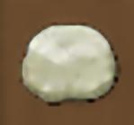 Giant puffball e
