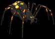 Hallowed Spider
