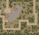 The Swamp Road, Part II