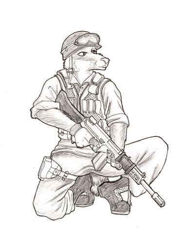 File:Contest Badger soldier by SteinWill.jpg