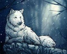 Boncuar wolf form