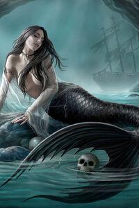 Siren-3