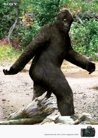 File:Bigfoot.jpg