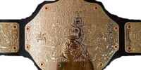 World Heavyweight Championship(Title History)