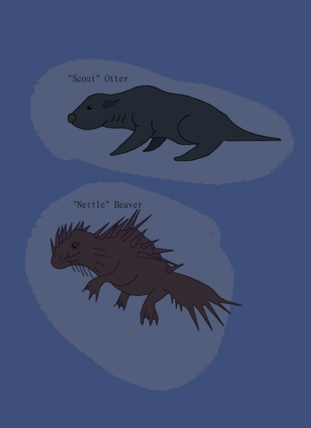 File:1429572224.mrsparta otters.png