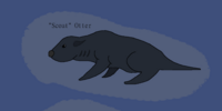 Scout otters