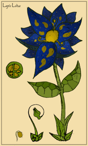 File:Lapis Lotus.png