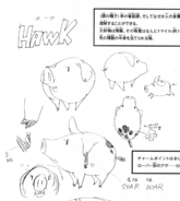 Hawk design