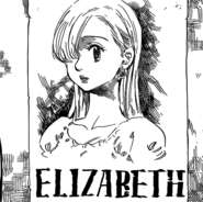 Elizabeth's wanted poster
