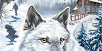 The White Wolf of Icicle Creek