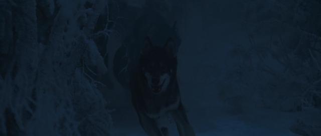 File:Secretpolicewolves.png