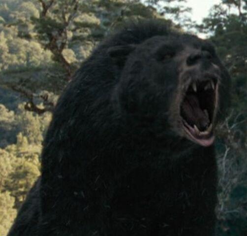 File:Blackbear.JPG