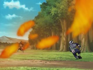320px-Fire Release Phoenix Immortal Fire Technique