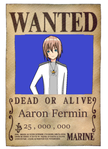 File:Aaron's wanted poster.png