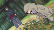 Young Torune & Shino.png