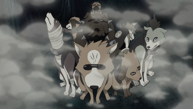 Soubor:Ninken summoned to search Orochi.png