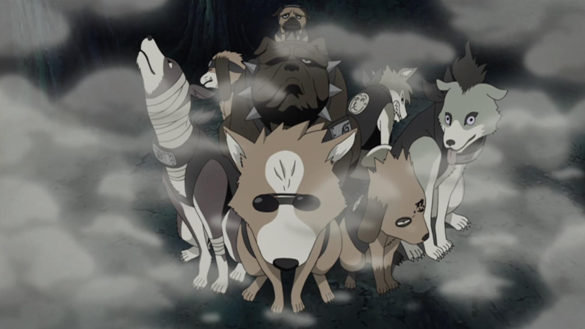 Guruko | Narutopedia | Fandom powered by Wikia