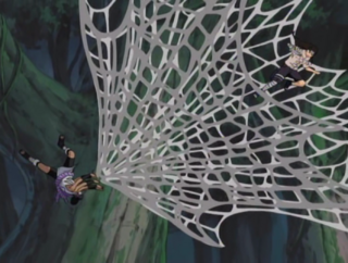 Spider Web Unrolling.png