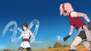 Ameno vs Sakura