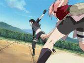Sakura Punches Sai