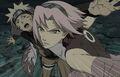 Naruto-shippuden-movie-6-sakura-protecting-naruto
