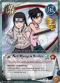 Neji Hyuga and Tenten