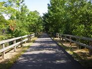 Green Pathway 1
