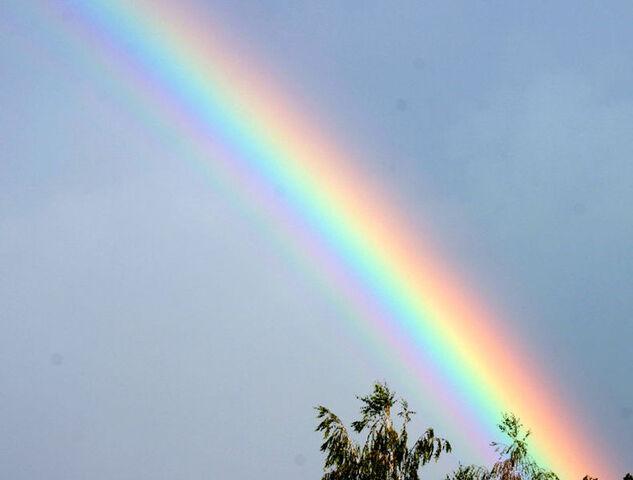 File:Mandarin Village rainbow over Eppinck Square.jpg