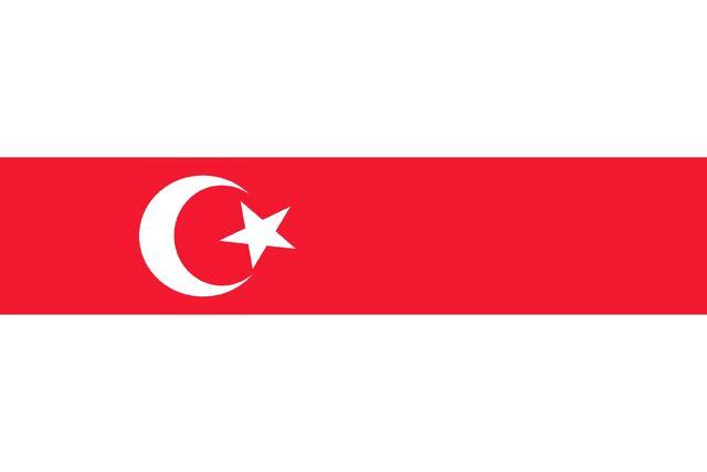 File:Flag of Turkic Republic (2).jpg