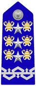 10 - Inspector General