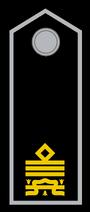 Luogotenente Generale MVSN comandante generale GNR o OVRA