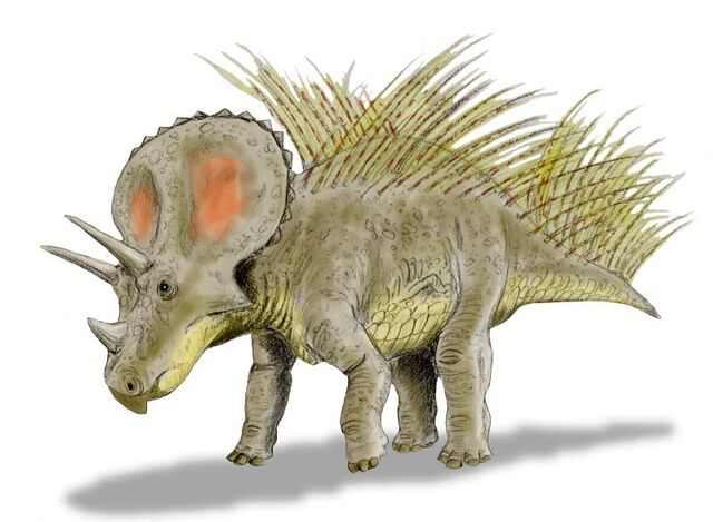 File:Triceratops new BW.jpg