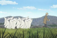 White bamboo hats chasing