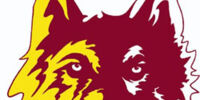 Northern State Wolves