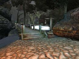 Dark Forest 11